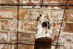 Bird house on a climbing trellis against a brick wall Stock Photos