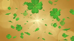 Blowing Clovers - golden color Stock Footage