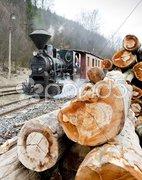 Steam train, Ciernohronska Railway, Slovakia Stock Photos