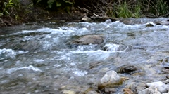 Stream rushing over cobblestone riverbed Stock Footage