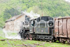 Steam freight train (126.014), Resavica, Serbia Stock Photos