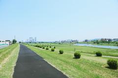 City park in Tokyo, Japan Kuvituskuvat