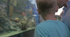 In city of Thessaloniki Greece father and son looking at aquarium with fish Stock Footage