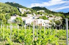 Gigondas with vineyard, Provence, France Stock Photos