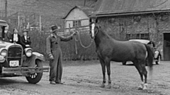 USA 1938: stable boy with a horse Stock Footage