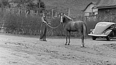 USA 1938: stable boy showing a horse Stock Footage