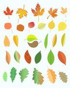 Autumn leaves. Stock Illustration