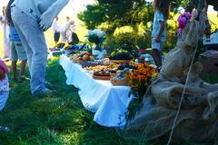 Beautiful wedding feast in nature, abundance of meals on a table Stock Photos