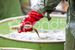 Harvesting pond Stock Photos