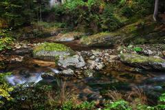 Stream in Karkonosze Mountains Stock Photos