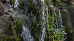Close up of beautiful small waterfall falls on green plant, 4k shot Stock Footage