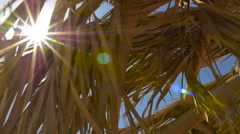 The sun's rays through the parasol. HD Stock Footage