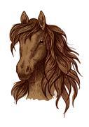 Brown running mustang portrait Stock Illustration