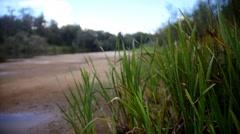 Landscape of forest river - Ilet, Mari-el, Russia, rack focus Stock Footage