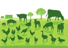 Organic Agriculture with Farm Animals Stock Illustration