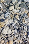 Stones in river Stock Photos