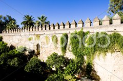 The gardens of the Alcazar of Catholic Kings, Cordoba, Andalusia, Spain Stock Photos