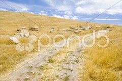 Archaeological place of Segobriga, Saelices, Castile-La Mancha, Spain Stock Photos