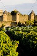Carcassonne, Languedoc-Roussillon, France Stock Photos