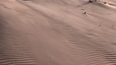 Wind moves the sand in the desert Stock Footage