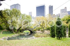 The Pond, Central Park, New York City, USA Stock Photos