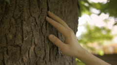 Close-up of a hand touching a tree trunk in nature Stock Footage