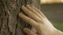 Close-up of hand touching a tree trunk with care on a summer day Stock Footage