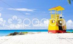 Cabin on the beach, Enterprise Beach, Barbados, Caribbean Stock Photos