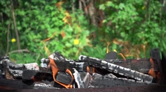 Burning Firewood on a Background of Greenery. Slow Motion Stock Footage