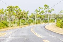 Road in Everglades National Park, Florida, USA Stock Photos