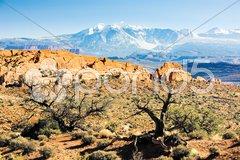 Arches National Park with La Sal Mountains, Utah, USA Stock Photos