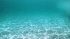 Diving Underwater in Laguna Beach, California Stock Footage