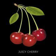 Juicy cherry on a black background Stock Illustration