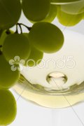Wineglass with white wine and grape Stock Photos