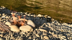 Camping fire on the river bank Stock Footage