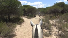 4K cowboys riding horses on a peaceful ride through Pinar of Coto Doñana -Dan Stock Footage