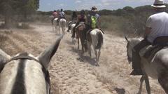 4K cowboys riding horses on a peaceful ride through Pinar of Coto Doñana -Dan Stock Footage