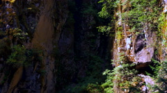 4K Rock Face Crevasse, Small Ferns and Dark Shadow, Stone Wall and Moss Stock Footage