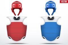 Set of Taekwondo body guard and helmets Stock Illustration