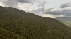 Mountains covered by green pine forests Stock Footage