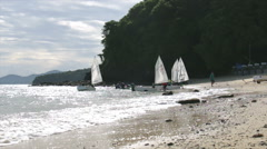 Sailing Club Sail Crew Trains on the beach. Stock Footage