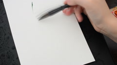 Artist draw a flower on a drawing paper.  Stock Footage