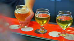 4K Two Tasters Placed by Hand, Craft Brewery Beer Flight, Sample Tasting Stock Footage
