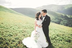 Young newly wed couple, bride and groom kissing, hugging on perfect view of Stock Photos