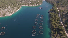 Aerial view of fish farm - tuna, salmon, Adriatic sea, Croatia Stock Footage