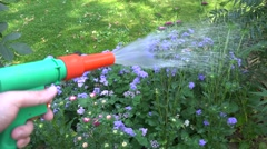 Hand with water hose nozzle tool watering flower bed in garden yard. Handheld Stock Footage