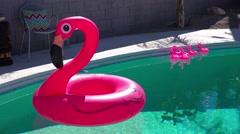 An artificial inflatable flamingo floats in a swimming pool at a Palm Springs Stock Footage