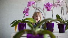 Slow motion. Little beautiful girl peeking through flowers. Stock Footage