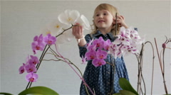 Little smiling girl with curly hair touches the petals of orchids. Stock Footage