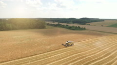 Aerial view of combine harvester working  in a wheat field Stock Footage